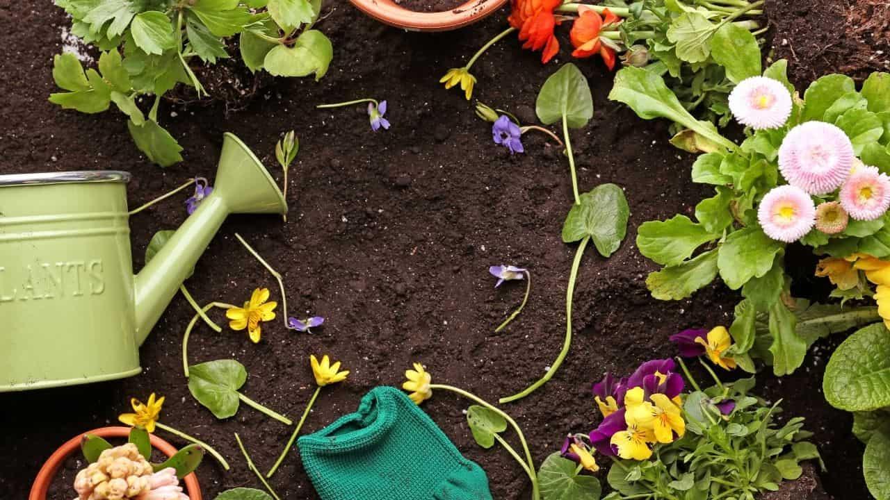 soil preparation  to Start a Flower Garden