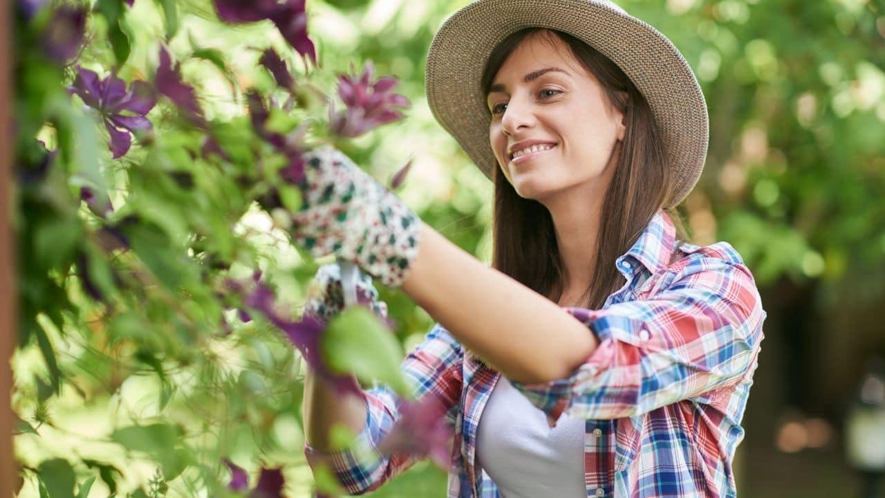 Flower Pruning