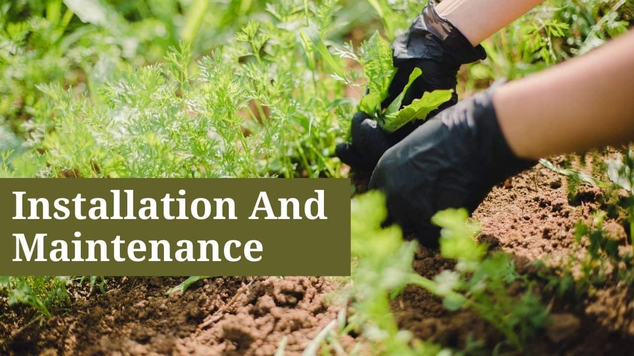 Installation And Maintenance Of An Urban Garden