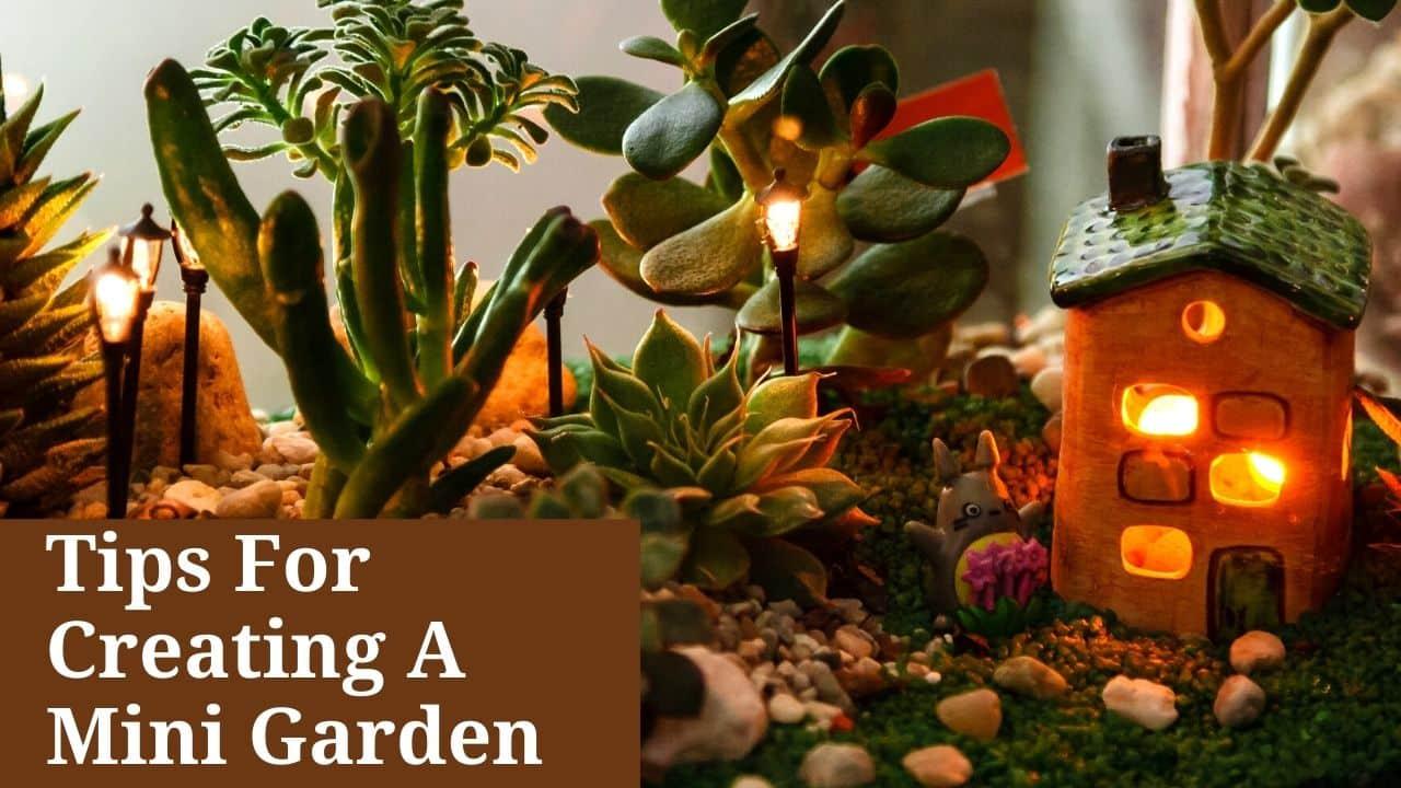 Tips For Creating A Mini Garden (1)