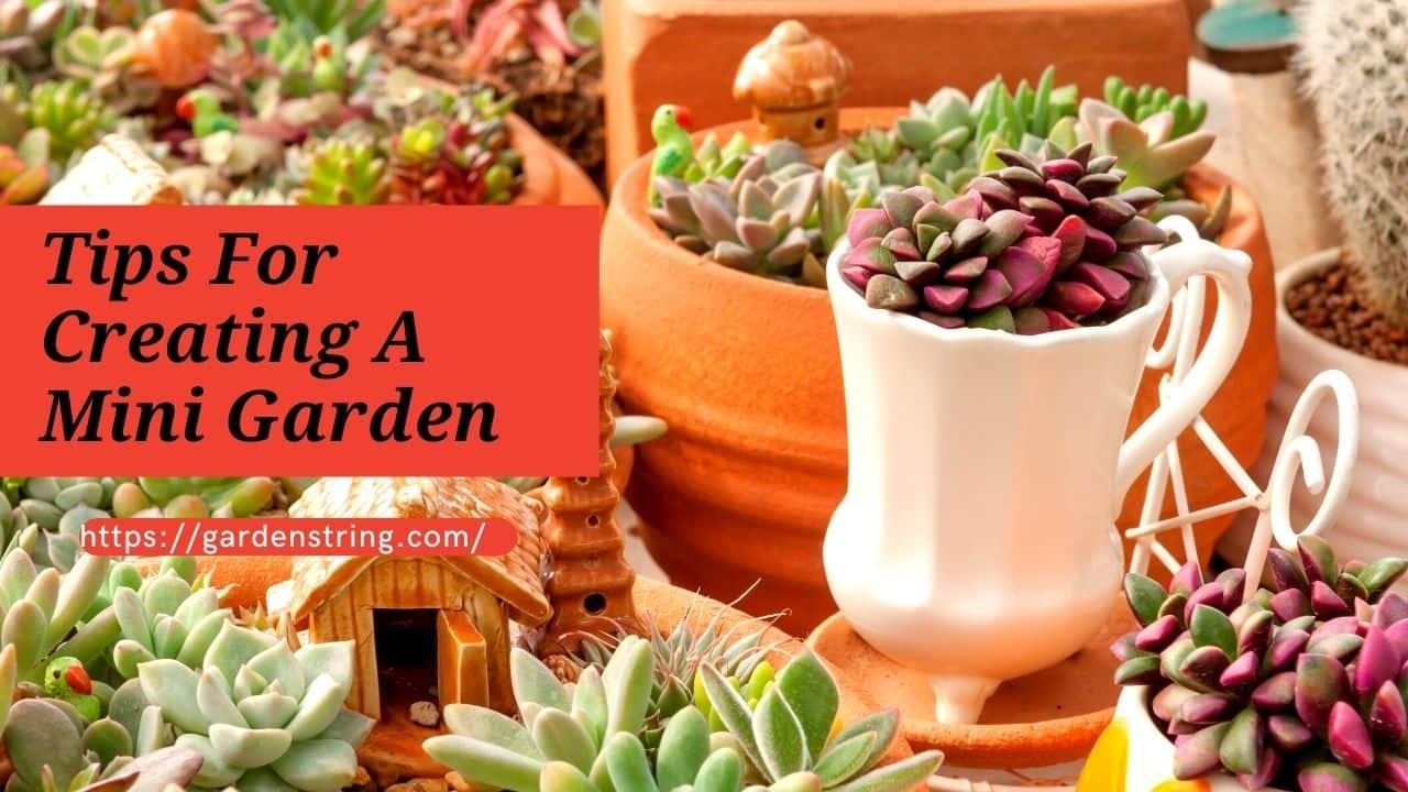 Tips For Creating A Mini Garden