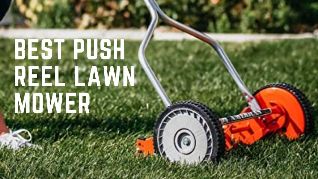 Best Push Reel Lawn Mower