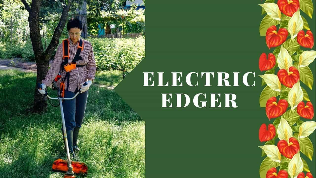 Electric Edger