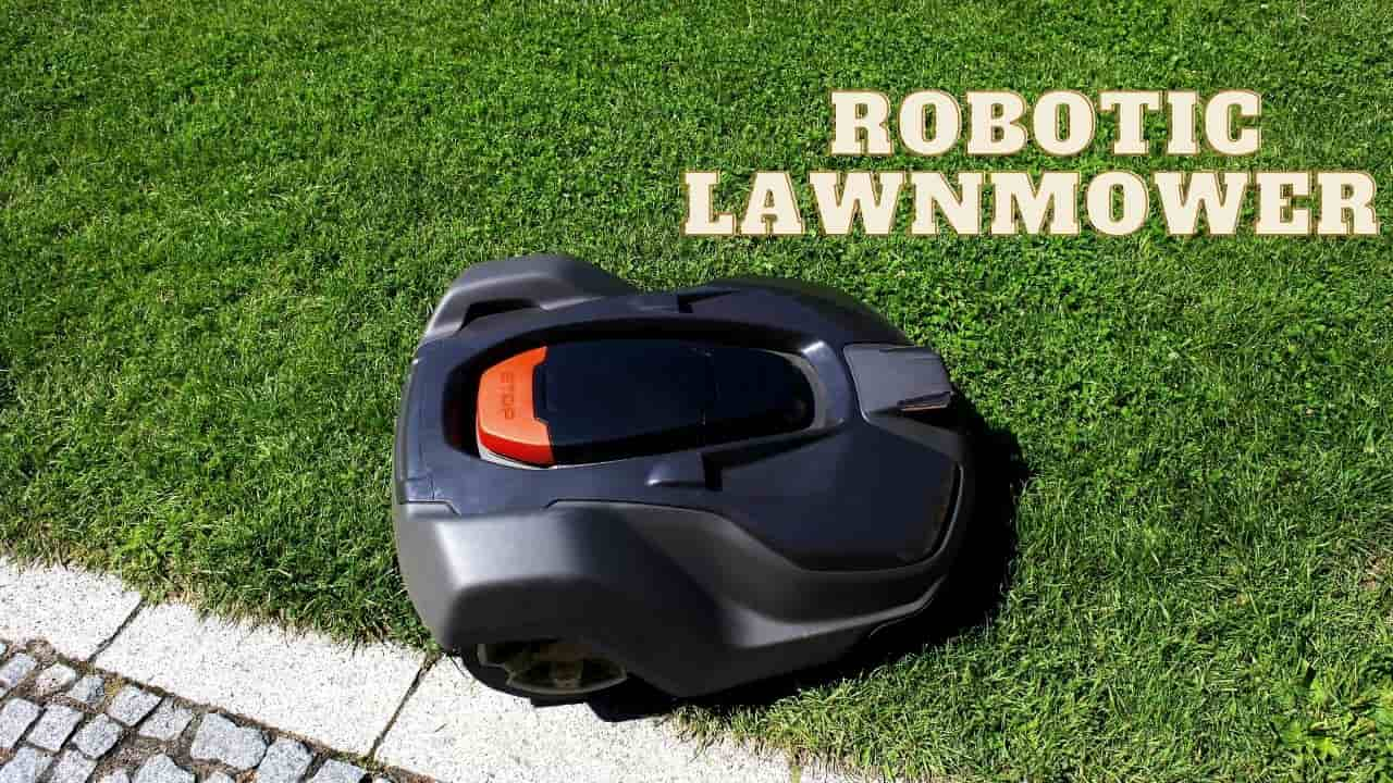 Questions & Answers About Robotic Lawnmowers